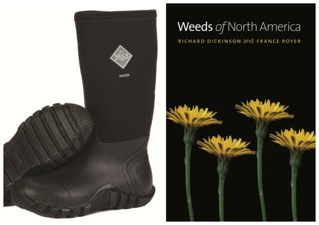 boots and weed book