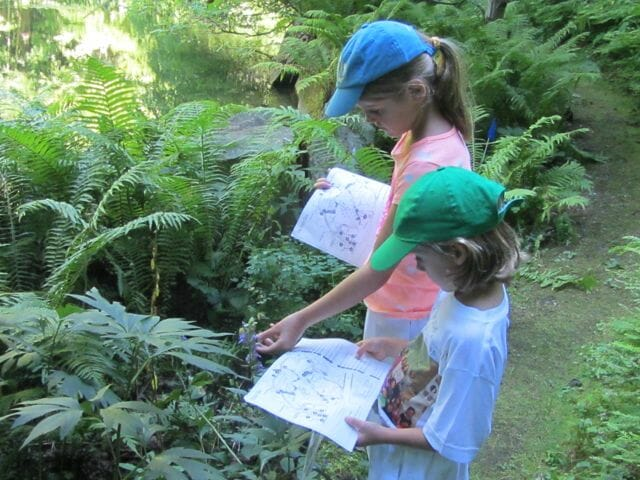 Phenology_Trail_Fern_Glen_J.Rubbo_summer2014 (2)