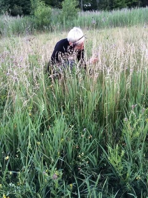 Gardiner in Grass