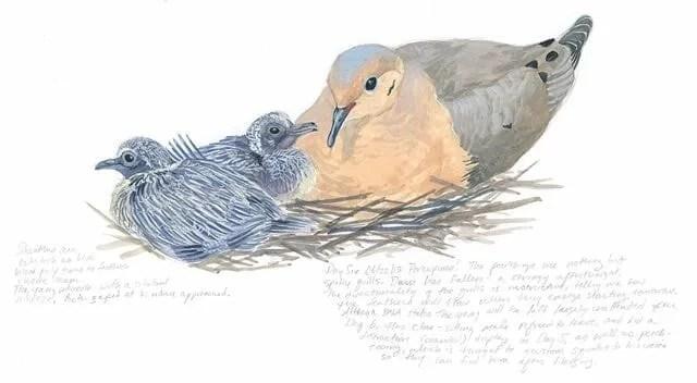 BABYBIRDS_MD07