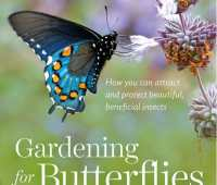'gardening for butterflies,' with the xerces society