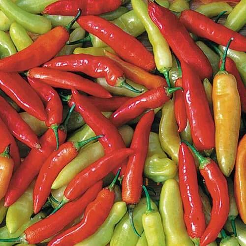 0942-aji-crystal-pepper