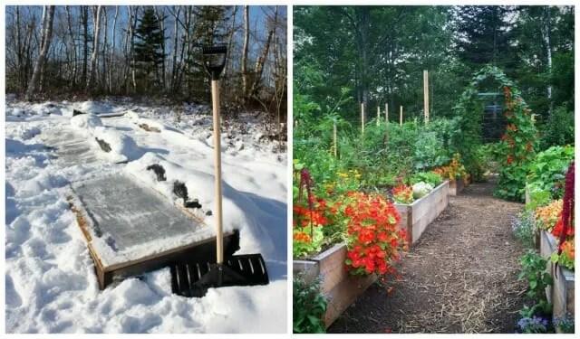 niki jabbour garden 1