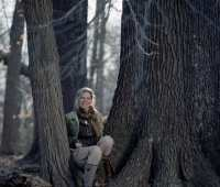 'nature's temples:' understanding old trees and old-growth forests, with joan maloof