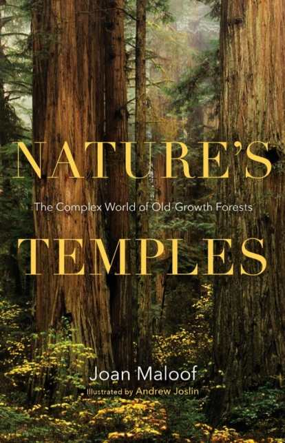 natures-temples-joan-maloof