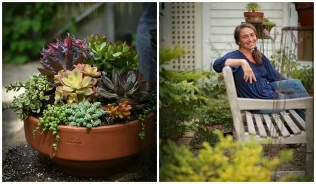 Katherine Tracey's succulent pots