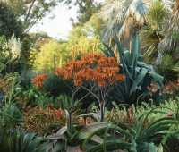 remembering 2 great plantswomen: ruth bancroft and elizabeth farnsworth