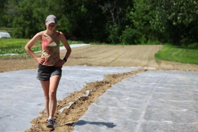 soil solarization with Sonja Birthisel