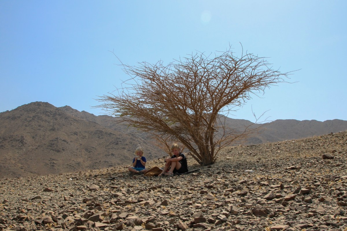 A picnic under a bare tree in Oman with the kids.