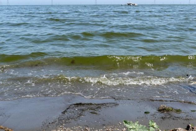 Каспийское море в Баку