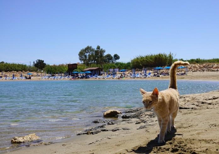 Пляжи Протараса Кипр