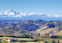 Пьемонт винодельческий регион Италии