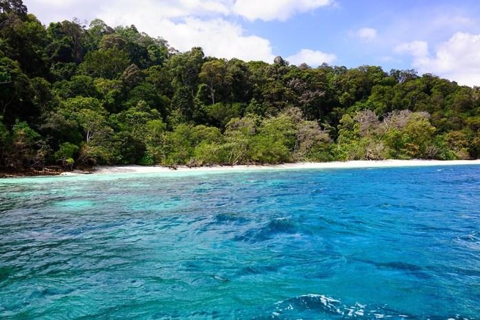 Обезьяний остров рядом с Ко Липе