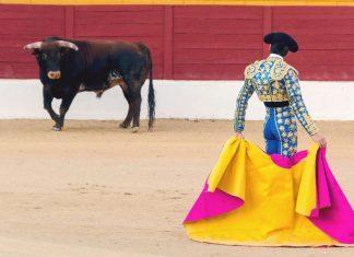 Виза в Испанию 2019