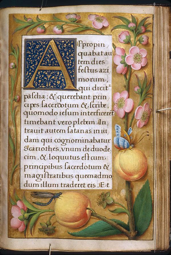 Евангелиарий. Тур, Франция, первая четверть 16-го века