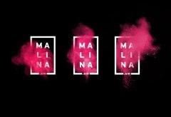 Фирстиль интернет-канала Малина