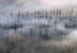 Клёвые минималистские фотографии Килиана Шонбергера