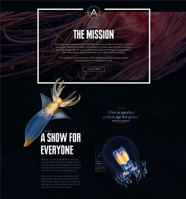 Фирменный стиль и сайт экспедиции Акватилис