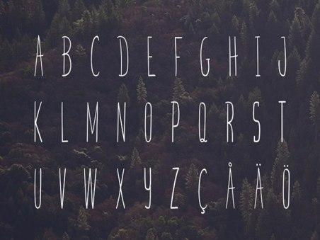 5 бесплатных декоративных шрифтов
