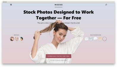 Moose — коллекция бесплатных стоковых фоток в едином стиле
