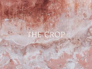 Фирменный стиль ювелирного бренда The Crop