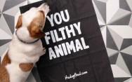 Стиль и упаковка Itsdogfood.