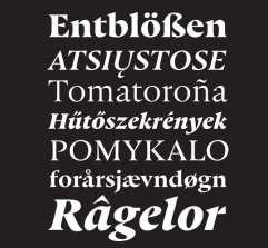 2019 Typeface Design Winners