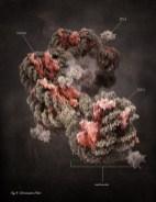 Трёхмерные иллюстрации и визуализации для научных журналов, созданные лондонским художником Маркосом Кеем
