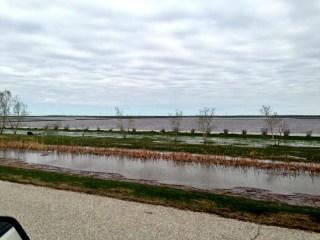 Overland flooding near Oak Bluff, MB