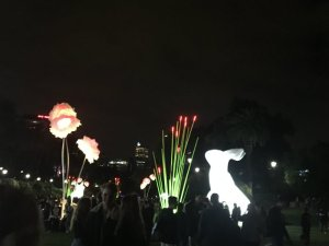 white night, bunnies and flowers