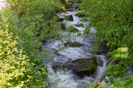 Stream along the trail