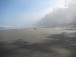 Leaving the fog behind!
