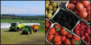 Craigie's Farm, situated in beautiful countryside.