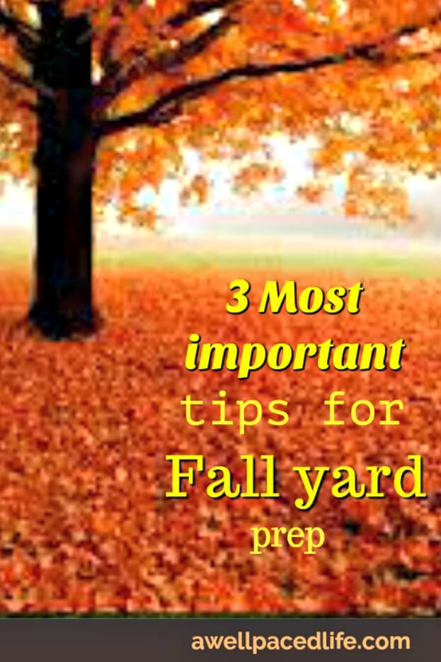 three most important tips for fall yard prep