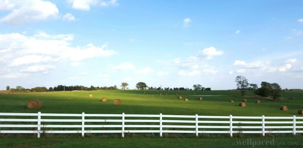 13 most important life lessons I learned by growing up on a farm