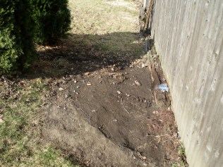 Where the mulch was - 2/27/17