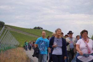 15-06-19-Weinbergswanderung_M_Groha_26