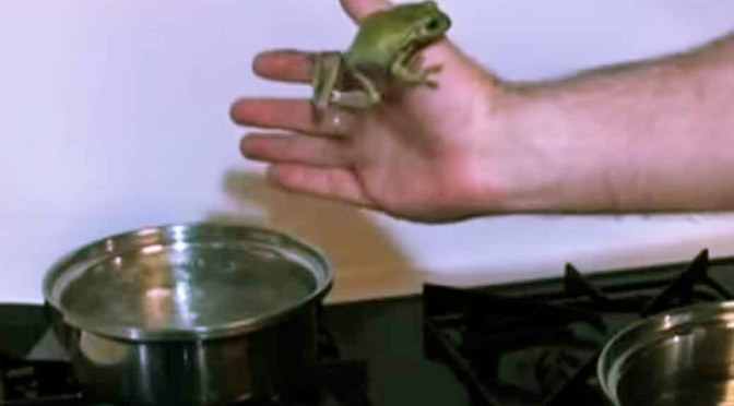 boiling frog tale