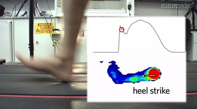 running with a shoe