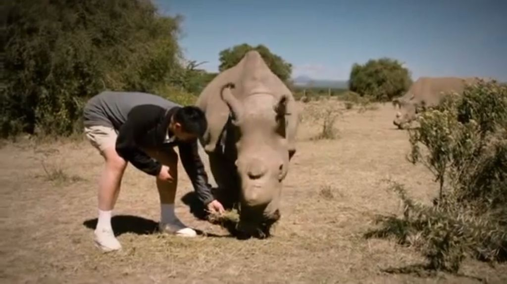 End of the wild Trailer Screenshot