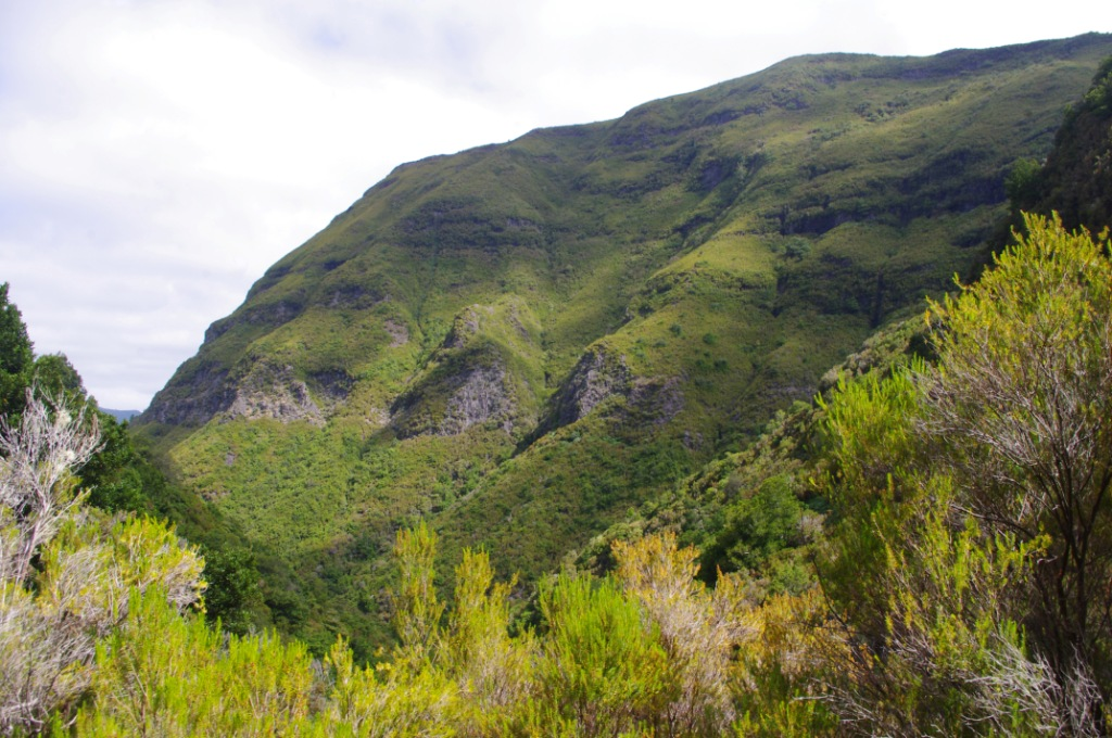 8 Tipps Fur Einen Perfekten Wanderurlaub Auf Madeira