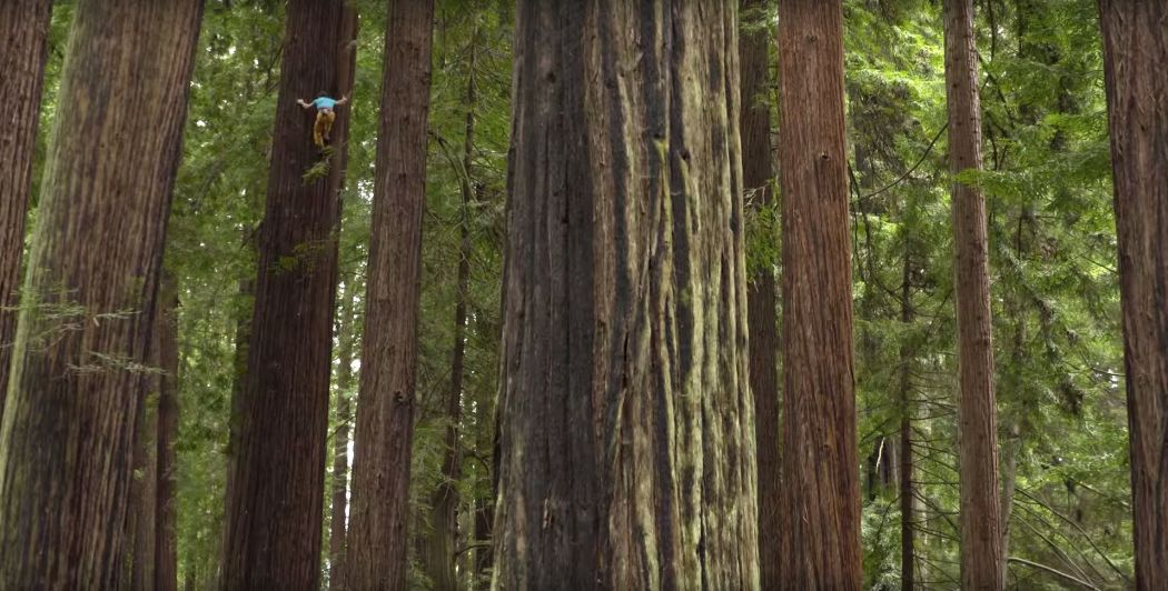 Chris Sharma Red Bull Screencap 2