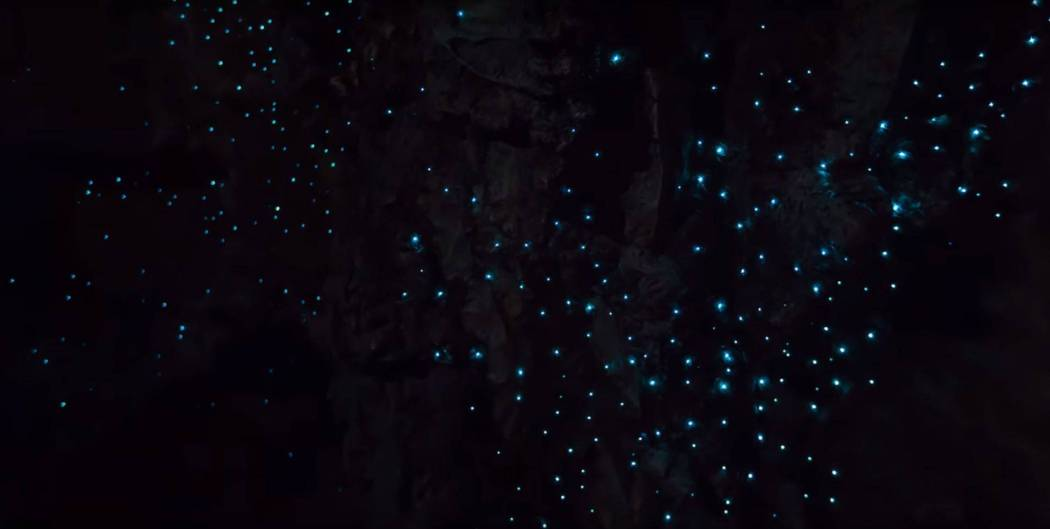 Glowworm Cave Screencap1
