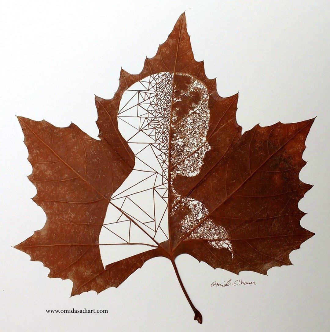 Omid Asadi Leaf Art Image 1