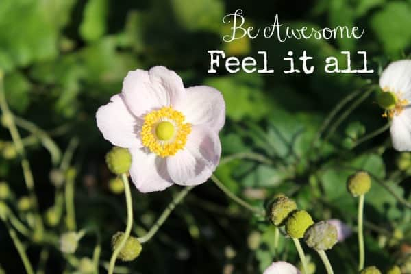Be Awesome: Feel It All