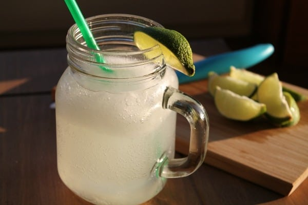 Vodka Lime Slush   How to be Awesome on $20 a Day