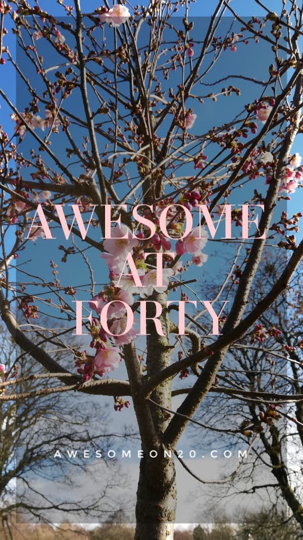 Awesome at 40 | How to Be Awesome on $20 a Day