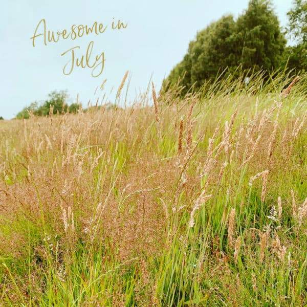 Wild grass with text