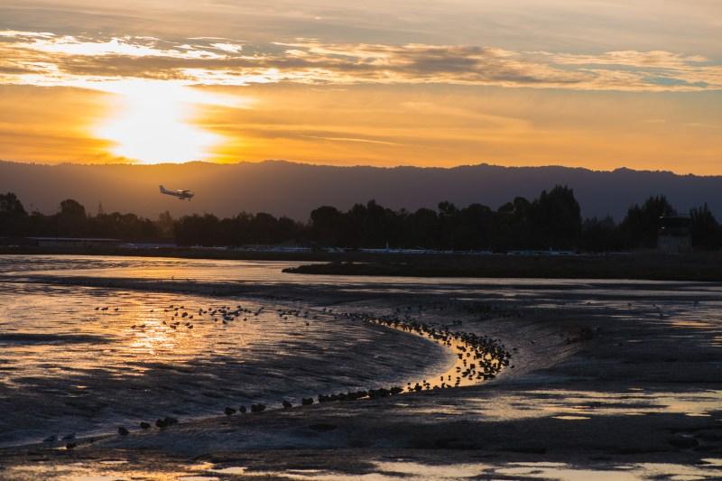 Sunset Landing at Palo Alto Airport
