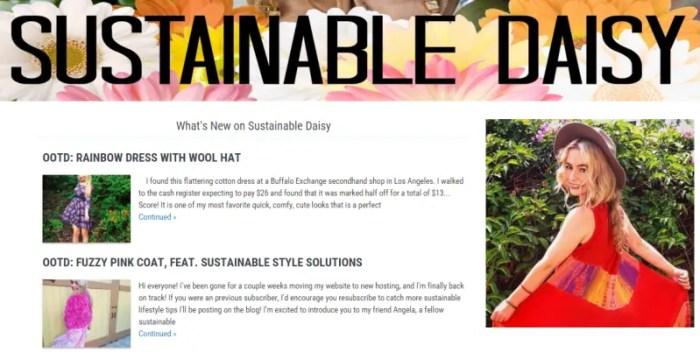 Sustainable Daisy Blog